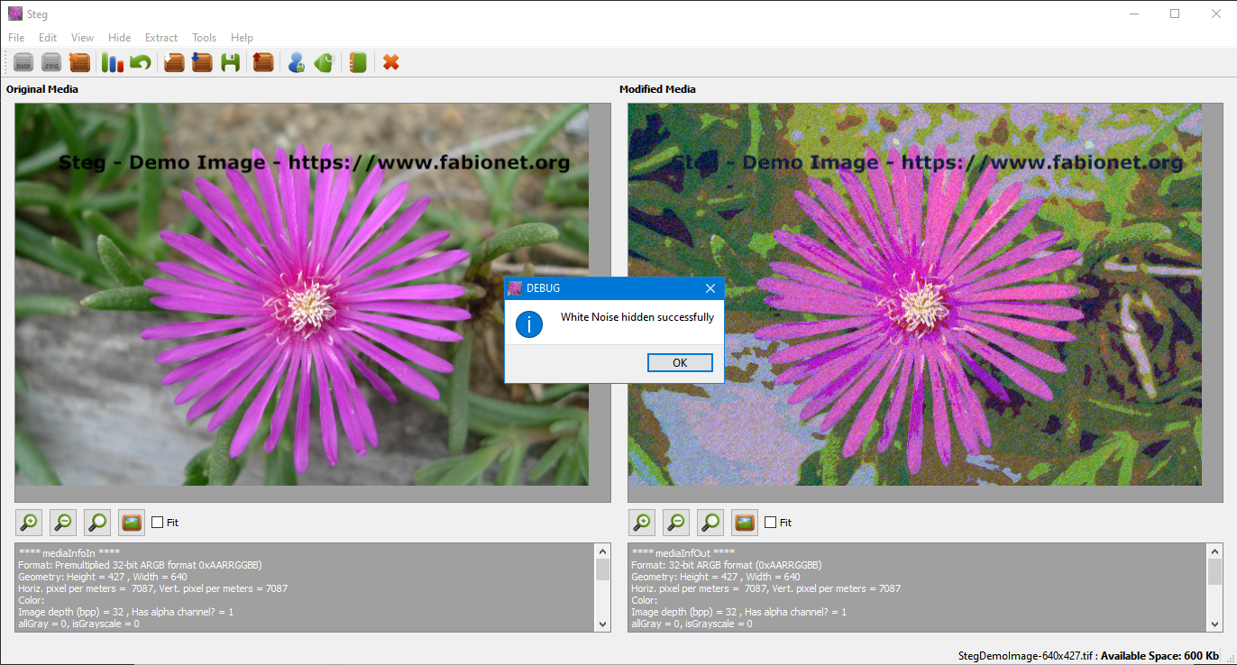Steg showing big Image artifacts when previous settings are used